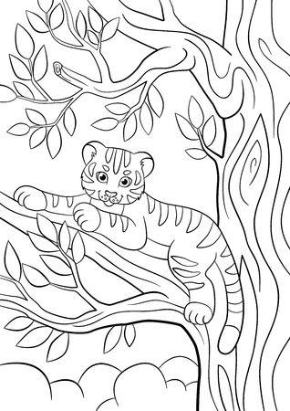 Coloring pages. Wild animals. Little cute baby tiger lays on the tree branch and smiles. Illustration