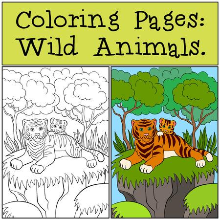 tigre bebe: P�ginas para colorear: animales salvajes. tigre de la madre con su peque�o tigre lindo beb� en el bosque.