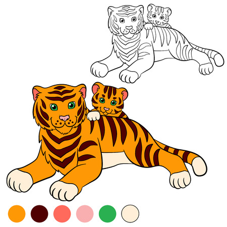 tiger page: Coloring page. Color me: tiger. Mother tiger lays with her little cute baby tiger.