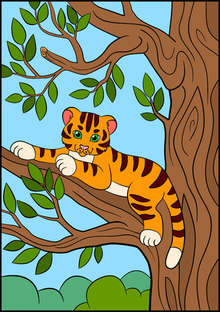 tigress: Coloring pages. Wild animals. Little cute baby tiger lays on the tree branch and smiles. Illustration