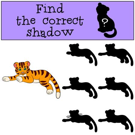 tigre bebe: Juegos infantiles: Buscar la sombra correcta. peque�o tigre lindo del beb� que pone y sonr�e.