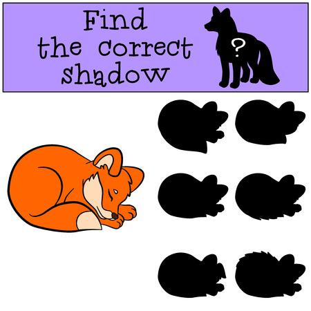 shape cub: Children games: Find the correct shadow. Little cute baby fox sleeps.