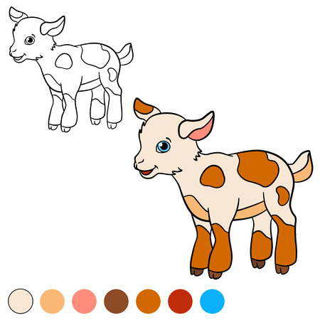 baby goat: Coloring page. Color me: goat. Little cute baby goat stands and smiles.