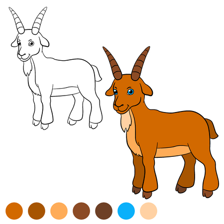 billy: Coloring page. Color me: goat. Billy goat stands and smiles. Illustration
