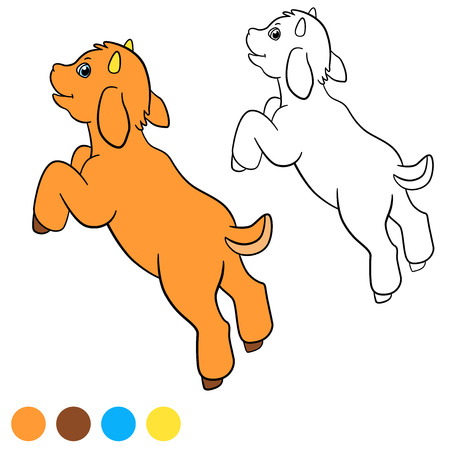 baby goat: Coloring page. Color me: goat. Little cute baby goat jumps and smiles. Illustration