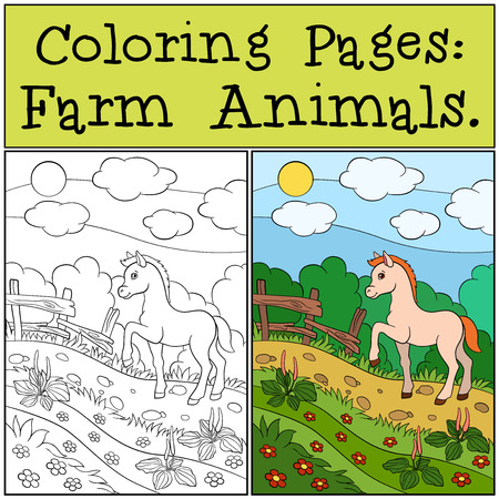 foal: Coloring Pages: Farm Animals. Little cute foal walks and smiles.
