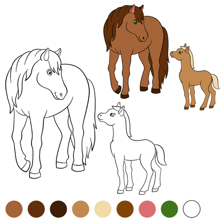 foal: Coloring page. Color me: horse. Mother horse with her little cute foal.