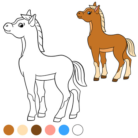 foal: Coloring page. Color me: horse. Little cute foal smiles. Illustration