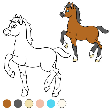 foal: Coloring page. Color me: horse. Little cute foal walks and smiles.