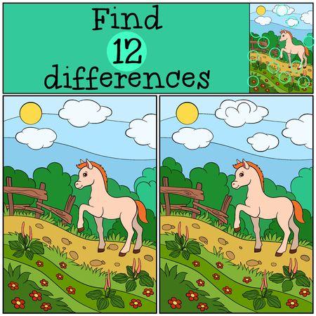 foal: Children games: Find differences. Little cute foal walks and smiles.