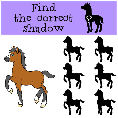 foal: Children games: Find the correct shadow. Little cute foal smiles.