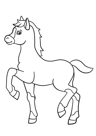 foal: Coloring pages. Farm animals. Little cute foal walks and smiles.