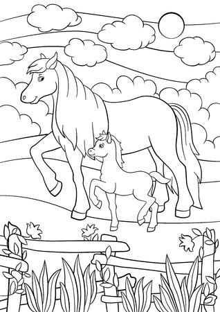 Disegni da colorare. Animali da fattoria. Madre cavallo cammina con il suo piccolo puledro carino sul campo.