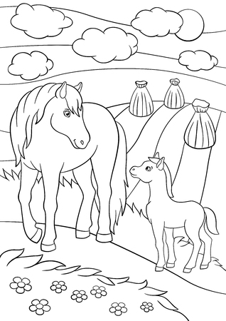 foal: Coloring pages. Farm animals. Mother horse with her little cute foal on the field. Illustration