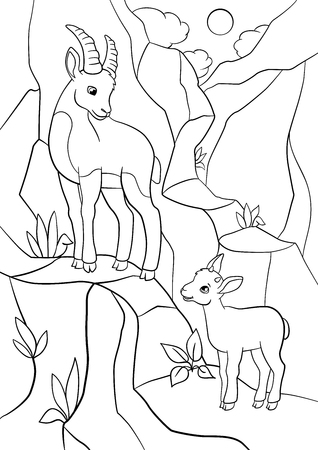 capra: Coloring pages. Mother ibex with her little cute baby ibex on the rock.