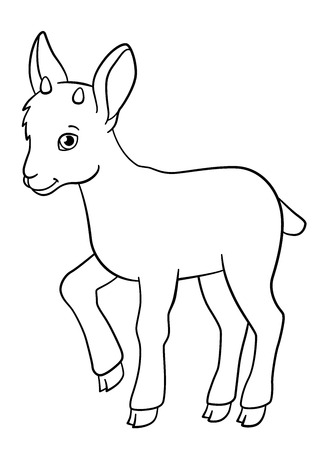 capra: Coloring pages. Little cute baby ibex stands and smiles.