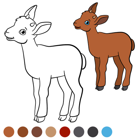 capra: Color me: ibex. Little cute baby ibex stands and smiles.
