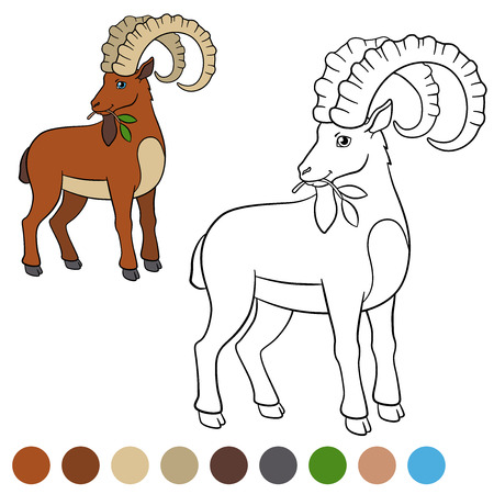 capra: Color me: ibex. Cute ibex with great horns eat lives and smiles. Illustration