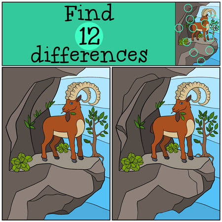 spot the difference: Educational game: Find differences. Cute ibex with great horns stands on the rock and eat leaves. Illustration