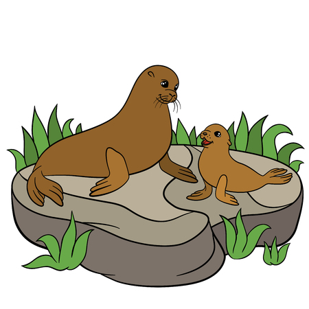 fur seal: Cartoon animals. Mother fur seal with her little cute baby on the rock.