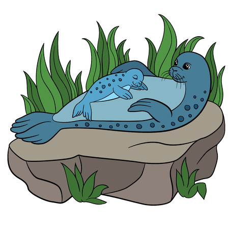 fur seal: Cartoon animals. Mother fur seal with her sleeping little cute baby on the rock.