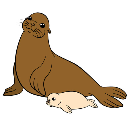 fur seal: Cartoon animals. Mother fur seal with her little cute white-coat baby.