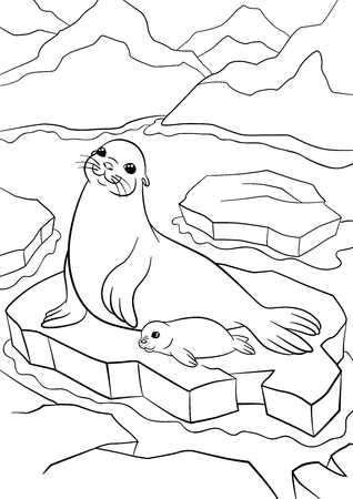 floe: Coloring pages. Mother seal with her little cute baby on the ice floe in the ocean. Illustration