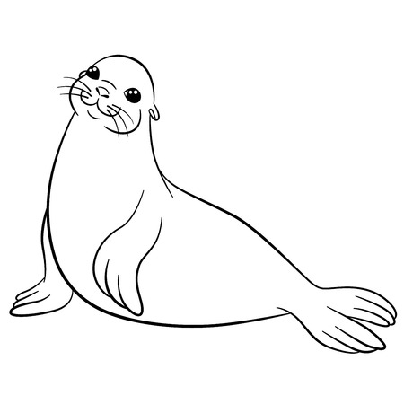 fur seal: Coloring pages. Little cute fur seal lays and smiles.