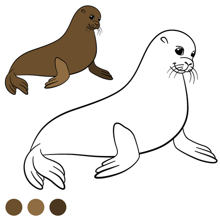 fur seal: Coloring page with colors. Brown little cute fur seal smiles.