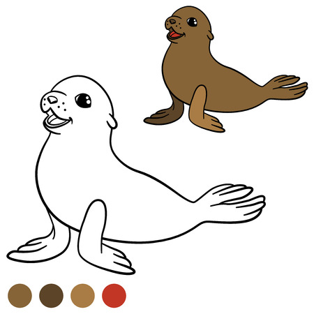 fur seal: Coloring page with colors. Brown little cute baby fur seal smiles. Illustration