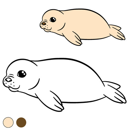 fur seal: Coloring page with colors. Little cute white-coated baby fur seal smiles.