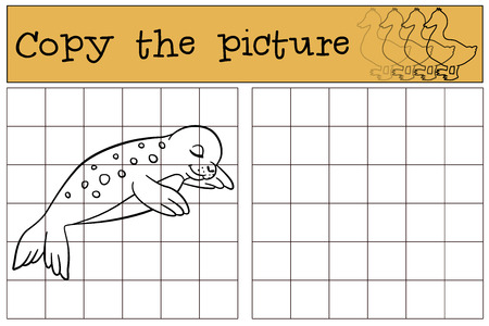 baby seal: Educational game: Copy the picture. Little cute baby seal sleeps and smiles.