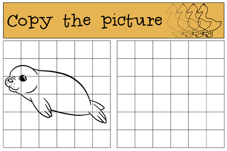 fur seal: Educational game: Copy the picture. Little cute baby fur seal smiles.