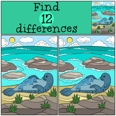 baby seal: Educational game: Find differences. Mother fur seal lays on the sand with her little cute baby seal and smiles.