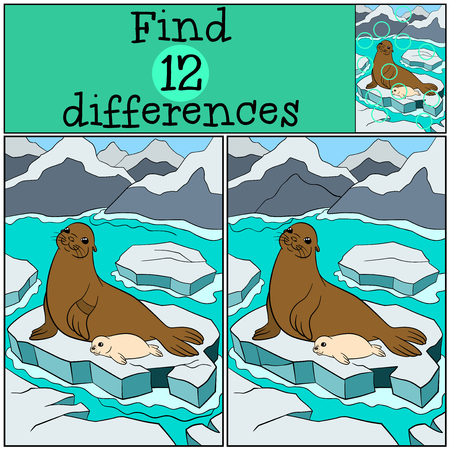 fur seal: Educational game: Find differences. Mother fur seal lays on the ice floe with her little cute white-coated baby seal and smiles.
