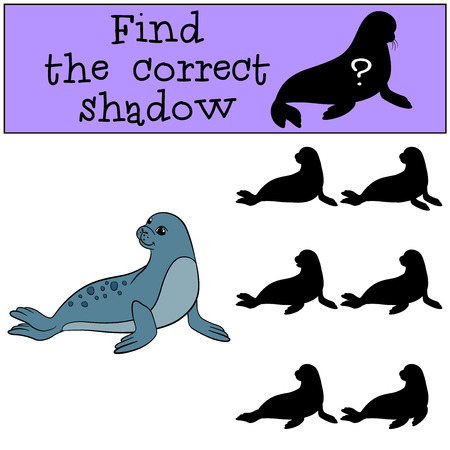Educational game: Find the correct shadow. Little cute fur seal smiles.