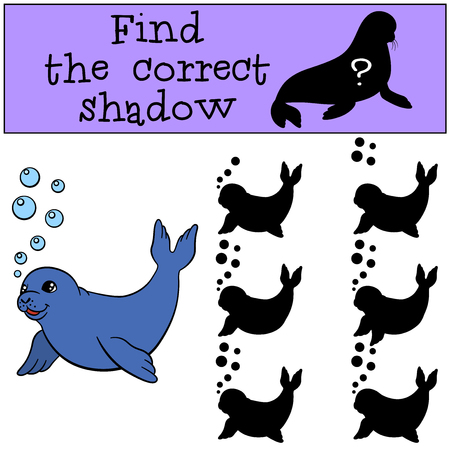 fur seal: Educational game: Find the correct shadow. Little cute baby fur seal.