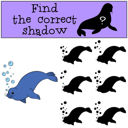correct: Educational game: Find the correct shadow. Little cute fur seal swims. Illustration