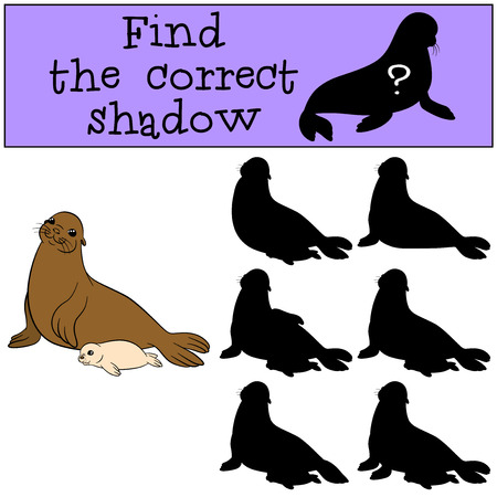 Educational game: Find the correct shadow. Mother fur seal with her little cute baby. Vektorové ilustrace