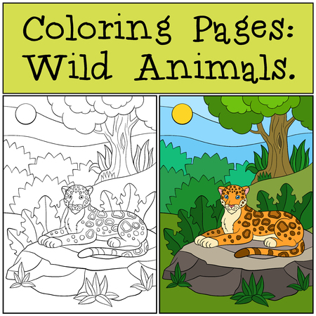 Coloring Pages Wild Animals Cute Jaguar Sits On The Grass In