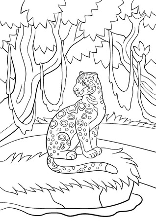 Coloring Pages Cute Spotted Jaguar Sits And Smiles Royalty Free
