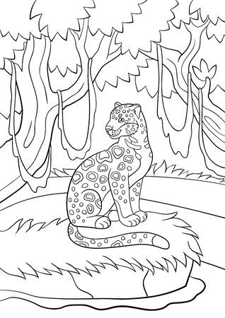 Páginas Para Colorear. Madre Con Su Pequeño Jaguar Cub ...