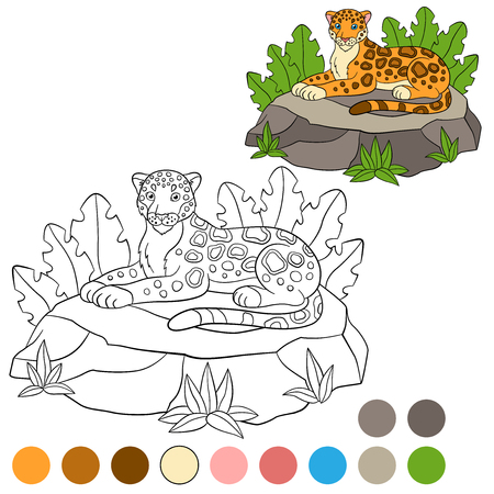 jaguar: Coloring page with colors. Cute jaguar lays on the stone and smiles. Illustration