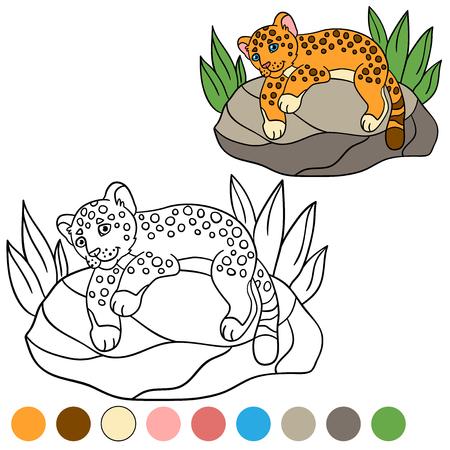 Dibujo Para Colorear Con Los Colores. Poco Jaguar Lindo Del Bebé Se ...