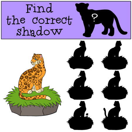 jaguar: Educational game: Find the correct shadow. Cute jaguar sits on the grass and smiles.