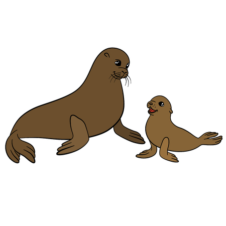 Cartoon animals. Mother fur seal with her little cute baby.