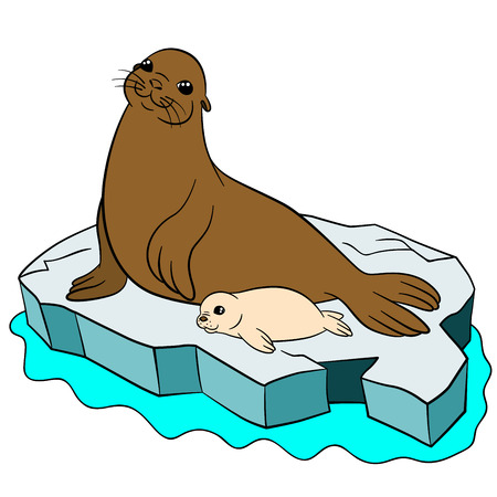 Cartoon animals. Mother fur seal with her little cute white-coat baby on the ice floe in the ocean.