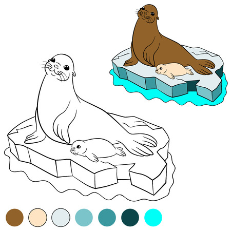 floe: Coloring page with colors. Mother fur seal with her little cute white-coated baby seal on the ice floe.