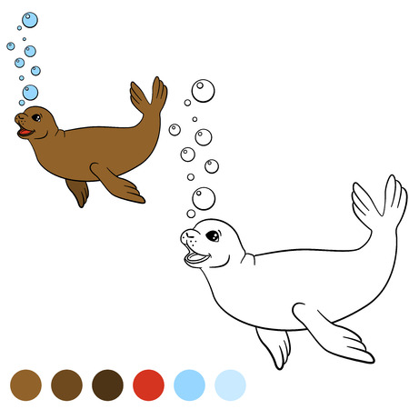 Coloring page with colors. Little cute brown seal swims and smiles.