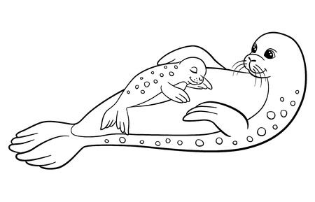 baby seal: Coloring pages. Mother seal with her little cute baby seal.